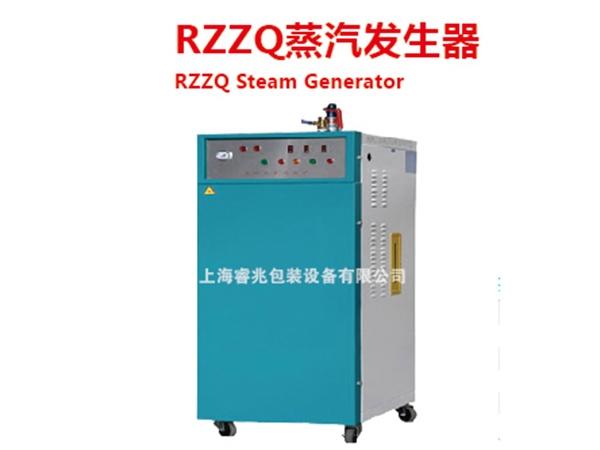 RZZQ蒸汽发生器